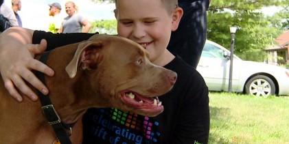 La curieuse histoire du chien sauveur